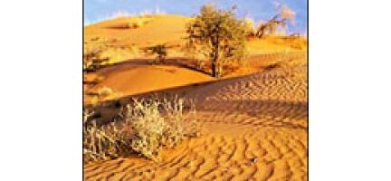 2070 Yılına Kadar Afrika