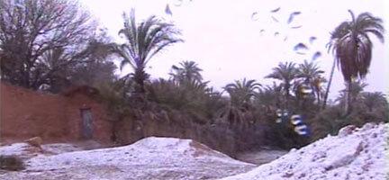 Kar Altında Kalan Tunus Yardım Bekliyor