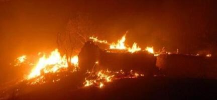 Kurşunlu'da Orman Yangını Çıktı