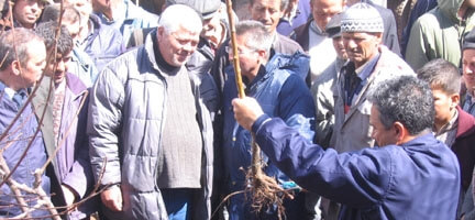 Susuzyayla Köyü'ne 4851 Kiraz Fidanı Dikildi