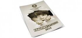 DENIZ FENERI 2015 ANNUAL REPORT
